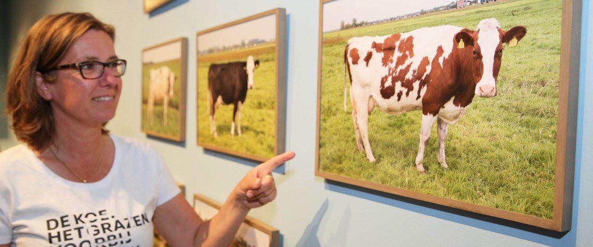 Stedelijk Museum met Koe-kast op Landbouwshow Opmeer